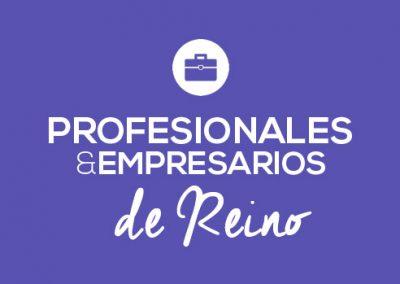 Profesionales & Empresarios de reino.